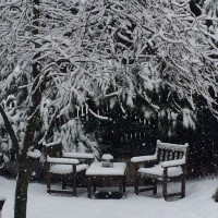 First snow. A Picture And A Poem.