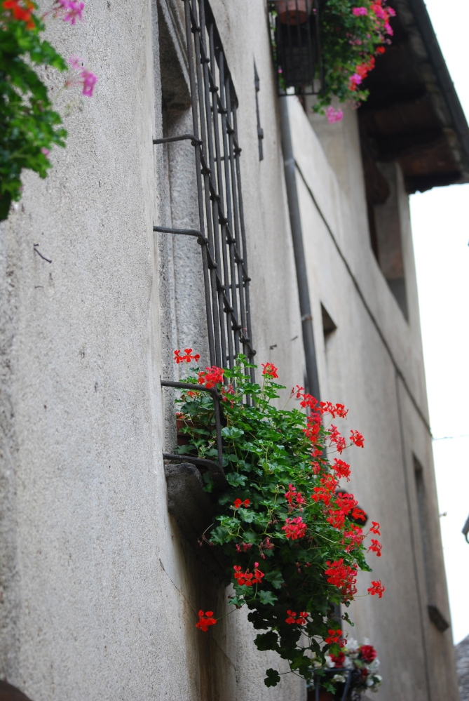 My two weeks in Italy: Windows and Balconies (6/6)